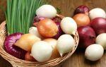 Польза лука — чем полезен и какие витамины содержит