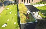 Как вырастить газон на крыше (пошаговая инструкция)