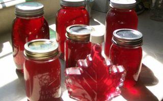 Вино из малины — рецепты, способы приготовления в домашних условиях