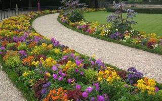 Схема посадки цветов на клумбе или планировка клумбы своими руками