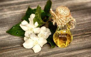 Масло жасмина и его применение в народной медицине и косметологии