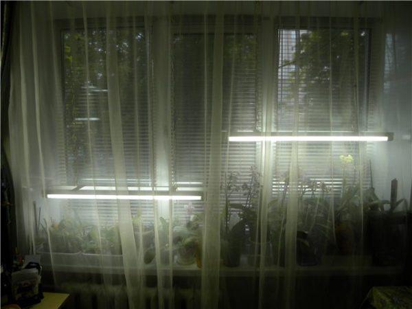 освещение на домашнем подоконнике