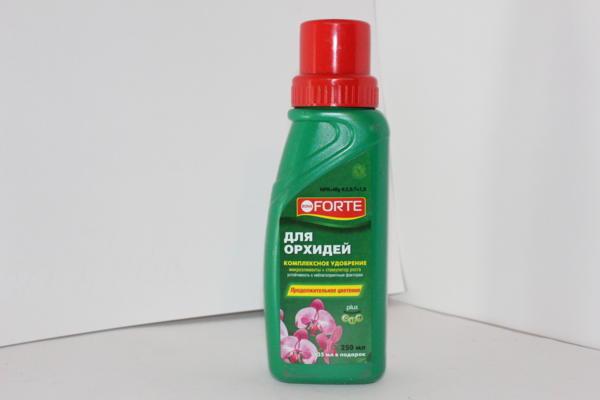 правильная подкормка для орхидей