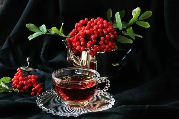 рябина красная чай