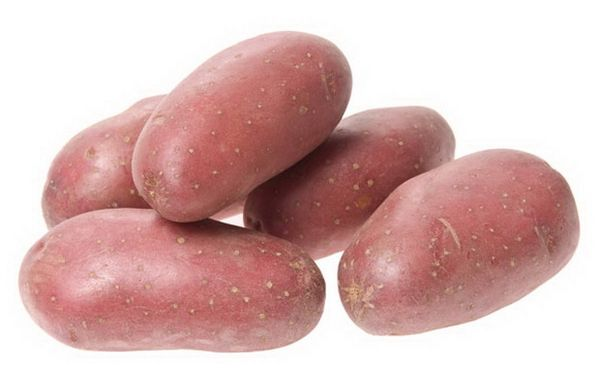 Вс о картошке родриго